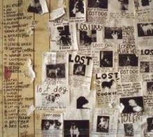 Lost Dogs - de Pearl Jam
