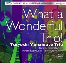 Tsuyoshi Yamamoto Trio - What a Wonderful Trio!