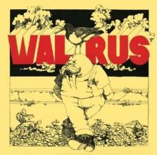 Walrus - de Walrus