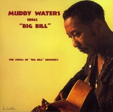 Muddy Waters - Muddy Waters Sings Big Bill