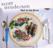 Scott Henderson - Well To The Bone