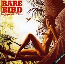 Sympathy - de Rare Bird
