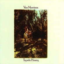 Tupelo Honey(180g) - de Van Morrison