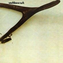 Wishbone Ash - de Wishbone Ash