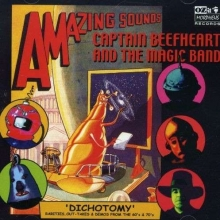 Dichotomy - de Captain Beefheart