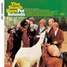 Pet Sounds - de Beach Boys