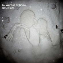 50 Words For Snow - de Kate Bush