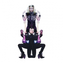 Prince -  Plectrumelectrum