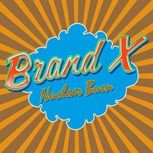 Brand X                                                                -  Nuclear Burn   4 Cd Box