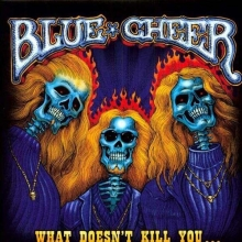 What Doesn't Kill You... - de Blue Cheer