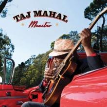 Maestro - de Taj Mahal