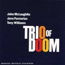 John McLaughlin - Trio Of Doom