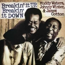 Breakin' It Up, Breakin' It Down - de Muddy Waters