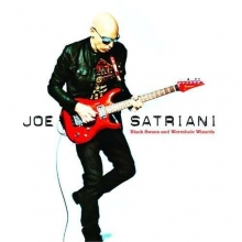 Black Swans & Wormhole Wizards - de Joe Satriani