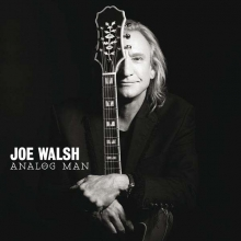 Analog Man - de Joe Walsh