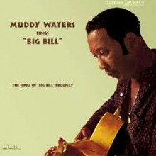 Muddy Waters Sings  - de Muddy Waters