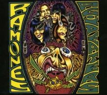 Acid Eaters - de Ramones