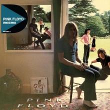 Ummagumma - de Pink Floyd