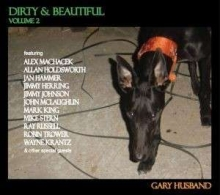 Gary Husband - Dirty & Beautiful Vol 2