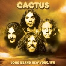 Long Island Ny 1971 - de Cactus